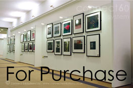 Purchase, Purchasing, Buying, Buy, Uk, British - Exhibition Board, Exhibitions Boards, Exhibition Boarding